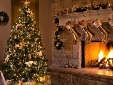 Storia dell'albero di Natale